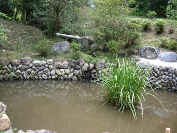 高麗神社裏手池